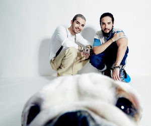 tokio hotel, pumba, and bill kaulitz image