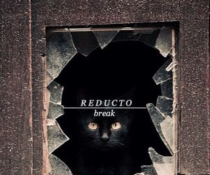 harry potter and reducto image