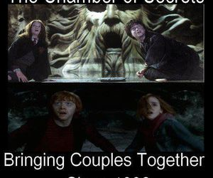 harry potter, chamber of secrets, and hermione granger image