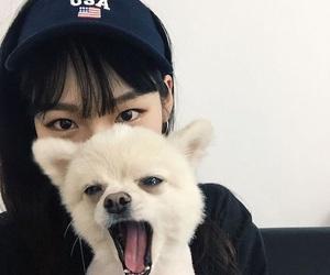 ulzzang, dog, and asian image
