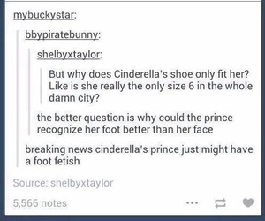 cinderella, funny, and tumblr image