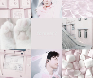 exo, pastel, and suho image