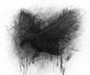 black, art, and bird image