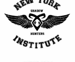 institute and shadowhunters image