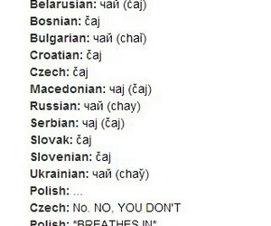 languages, polish, and slavic image
