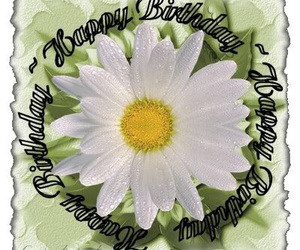 birthday, flower, and happy image