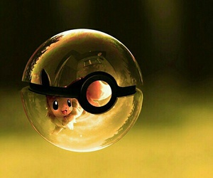 pokemon, pokeball, and eevee image