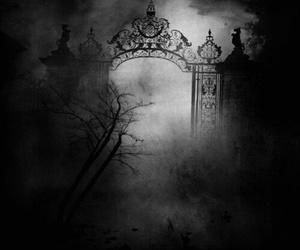 dark and fog image