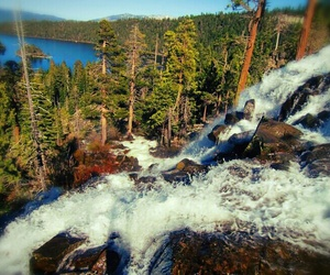 forest, lake, and lake tahoe image