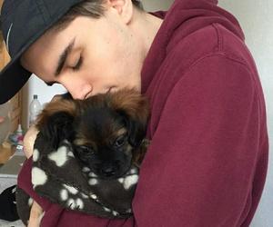 boy, dog, and cute image