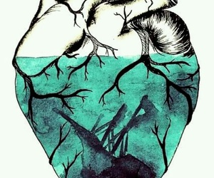 heart blue image