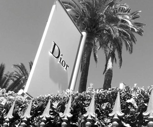 brand, clothes, and dior image