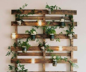 plants, decoration, and diy image