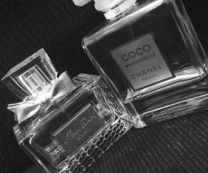 chanel coco vs dior miss image