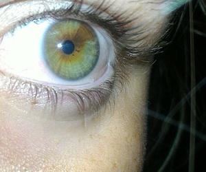 eyes green image