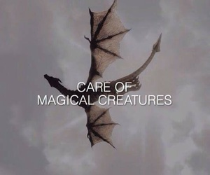 harry potter, hogwarts, and creatures image