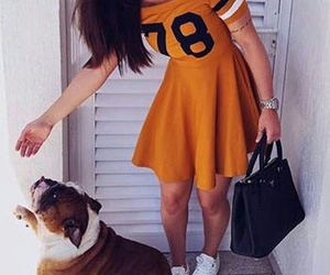 dog, dress, and sport image
