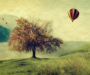 tree, vintage, and balloons image