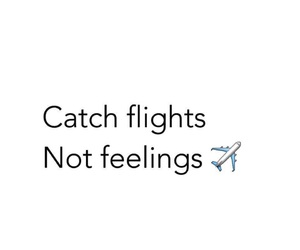 feelings, flight, and catch image