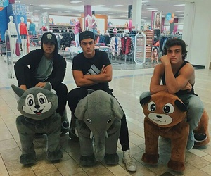 grayson dolan, ethan dolan, and alex aiono image