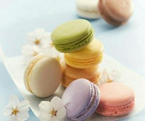 flowers and macarons image