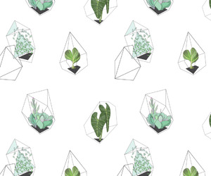 background, geometric, and plant image