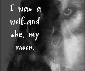 moon, love, and wolfx image