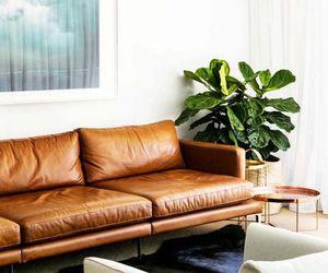 chic, decor, and fashion image