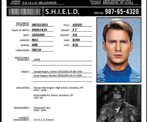 Marvel, shield, and steve rogers image