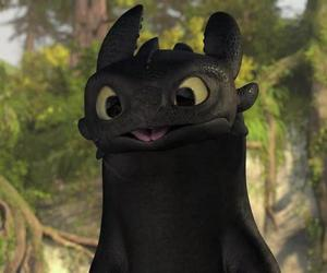 dragon, toothless, and how to train your dragon image