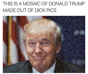 DT, funny, and haha image