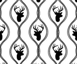background, deer, and black and white image