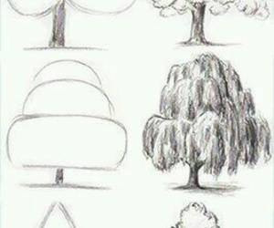 drawing, tree, and art image