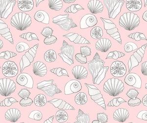 background, seashell, and pattern image