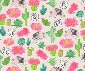 pattern, background, and cactus image