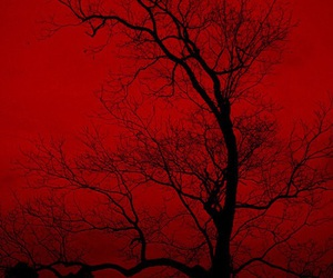 red and tree image