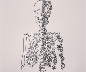 flowers, skeleton, and drawing image