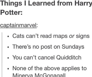 harry potter, minerva mcgonagall, and quidditch image