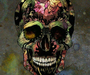 art, skeleton, and colorful image