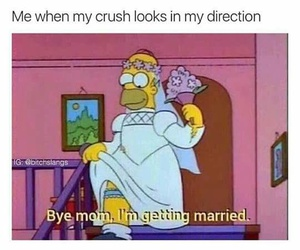 crush, simpsons, and homer simpson image