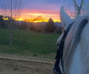 amazing, colours, and sunset image