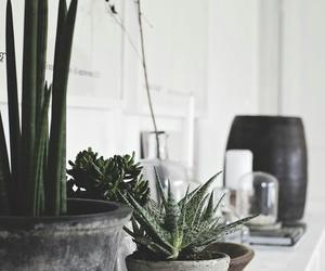 deco, design, and indoor image