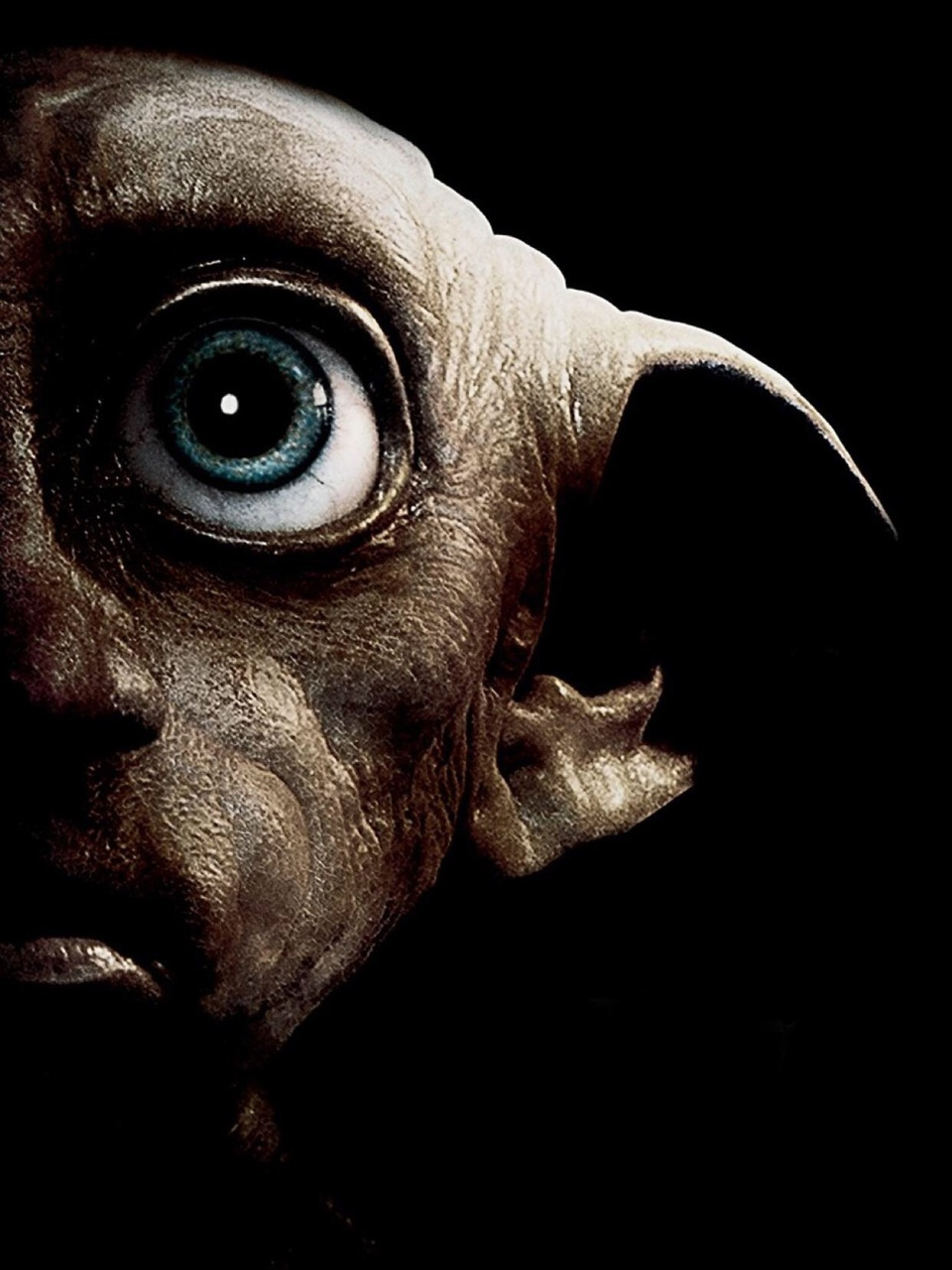 harry potter, dobby, and harrypotter image