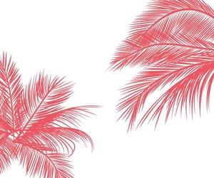 pink, white, and lockscreen image