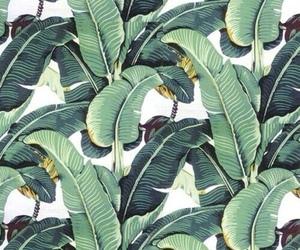 fav and wallpaper image