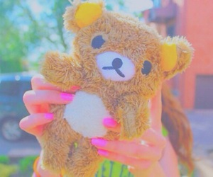 cute, tumblr, and bear image