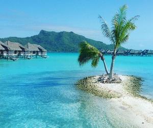 ocean, beach, and tropical image