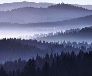 amazing, fog, and insane image