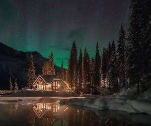 amazing, lights, and photography image