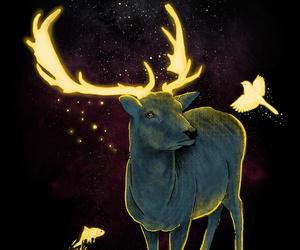 deer, art, and light image